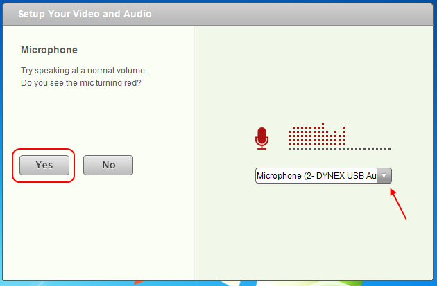 Screencap showing what the microphone calibration window looks like